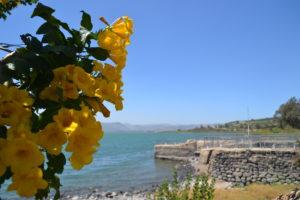 Gennesaret från Kapernaums hamn