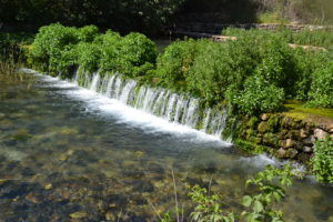 Jordanflodens källvatten i Banias